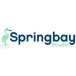 Springbay Studio Ltd